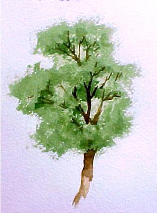 http://www.susieshort.net/sitebuilder/images/Tree2_Two-317x431.jpg